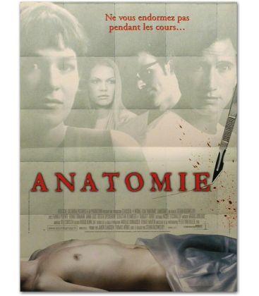"""Anatomie - 16"""" x 21"""""""